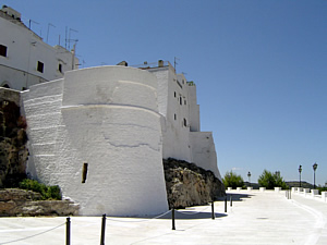 Tower of the defensive walls